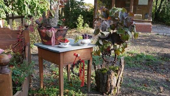 Wein im Kübel mit dekorativem Winterschutz.