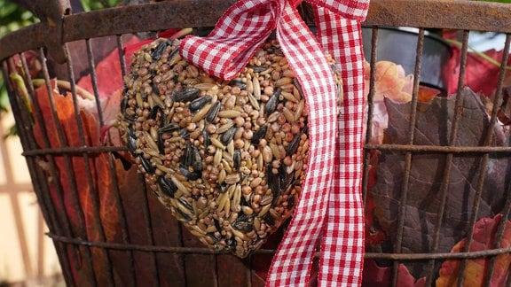 Vogelfutter in Herzform hängt an einem Wäschekorb voll Laub.