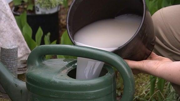 Gießkanne mit Mischung aus Hefe, Wasser und Zucker als Beschleuniger für Kompost