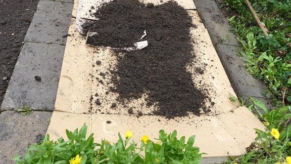 Erde auf Pappe auf einem Beet