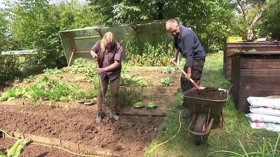 Der Experte für Gemüseanbau von der Lehr- und Versuchsanstalt für Gartenbau, Martin Krumbein, und der MDR Garten-Redakteur Jörg Heiß stehen neben einem abgeernteten Beet in einem Kleingarten und arbeiten mit Schaufeln Pferdemist aus einer Schubkarre in die Erde ein