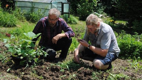 Der MDR Garten-Redakteur Jörg Heiß hockt neben dem Fachbereichsleiter für Gemüseanbau an der Lehr- und Versuchsanstalt Gartenbau in Erurt, Martin Krumbein, neben einem Beet in einem Kleingarten