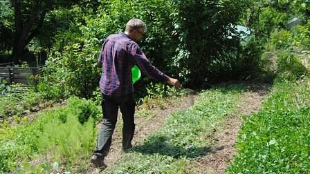 Der MDR Garten Redakteur Jörg Heiß Geht An Einem Mit Gründüngung  Bepflanzten Beet An Einem