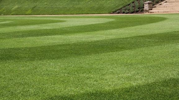 Eine Fläche mit englischem Rasen in hell- und dunkelgrünen Bahnen