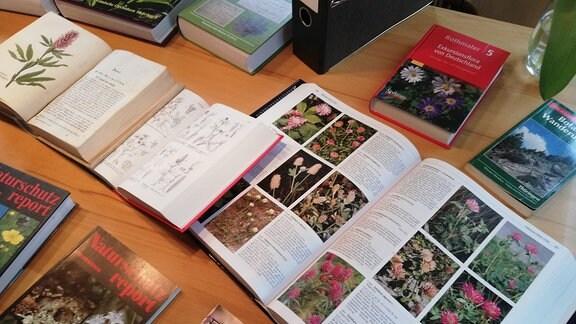 Viele Bücher mit Bildern von Pflanzen liegen auf einem Tisch.