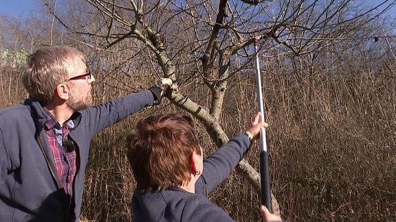 Obstbaumexpertin Monika Möhler schneidet äste aus einem alten Obstbaum. Redakteur Jörg Heiß schaut ihr dabei zu.