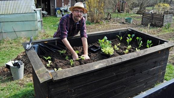MDR Garten-Redakteur Jörg Heiß, ein Mann mit kariertem Hemd und geflochtenem Hut auf dem Kopf, steht am Rand eines Hochbeetes mit Erde und jungen Gemüsepflanzen darin und setzt weitere Pflanzen hinein.