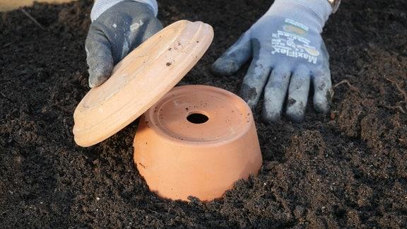 Von einer selbstgebauten Olla schaut nur noch ein bisschen Ton aus der Erde.