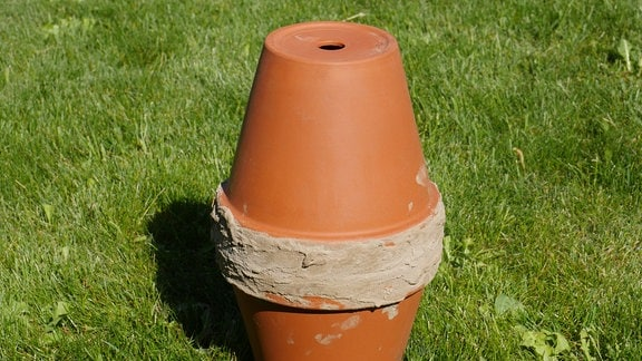 Eine selbstgemachte Olla aus zwei Tonblumentöpfen steht auf einer Wiese.