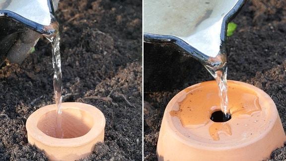 Collage: Mit einer Kanne wird Wasser in eine Olla gegossen und mit einer Kanne wird Wasser in eine selbstgebaute Olla gegossen.