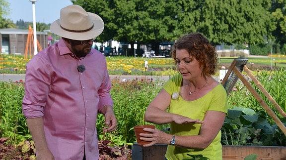Moderator Jens Haentzschel und Gartenfachberaterin Brigitte Goss arbeiten an einem Beet.