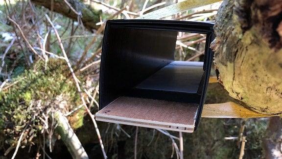 Ein Karton, der als Falle für die Spuren der Tiere dient. An beiden Enden sind Stempelkissen, in der Mitte weißes Papier.