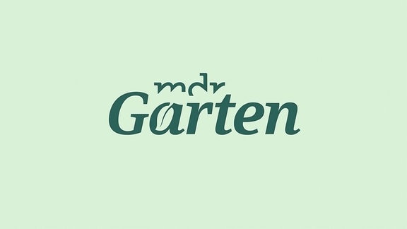 Logo MDR Garten