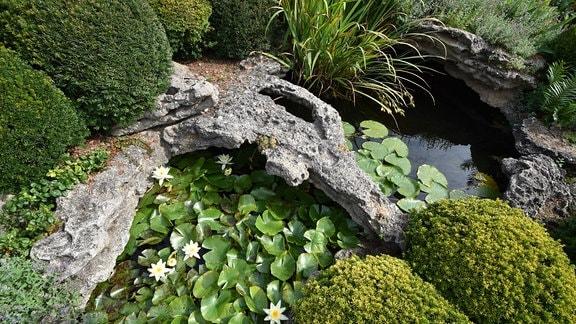 Wasserachse in einem Garten die mit großen aus Beton gegossenen Steinen und Pflanzen umgeben ist.