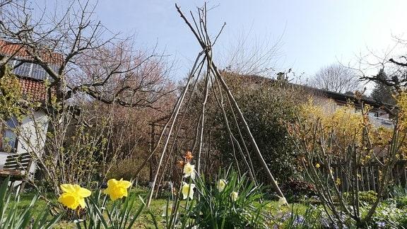 Ein Tippi aus Haselnussstecken in einem Garten