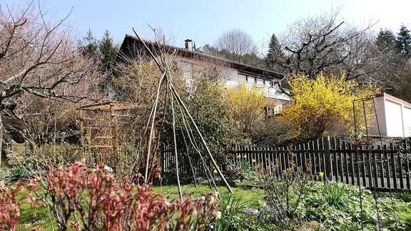 Ein Tippi aus Stöcken steht in einem Garten.
