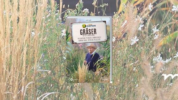 Buchcover: Gräser Staudenexperte und Buchautor Horst Schöne spaziert durch einen Gräsergarten.
