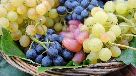 Verschiedenfarbige Tafeltrauben liegen in einem Korb mit zwei Weinblättern