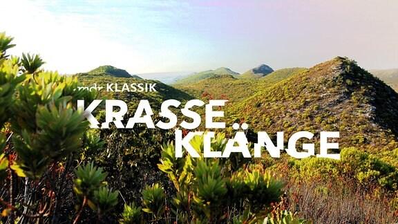 """Blick über die Fynbos-Wüste (grün-bunte Hügel), Logo """"Krasse Klänge"""" mit leicht zerschnittener Schrift."""