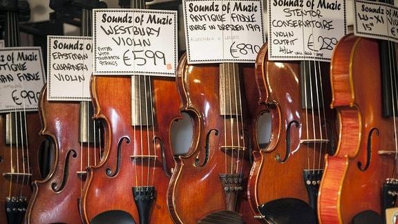 Geigen und Fiedeln in Musikladen