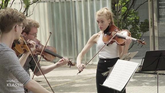 Zwei junge Männer und eine junge Frau spielen Geige und Bratsche, Nahaufnahme mit unscharfem Hintergrund. Männer links angeschnitten mit Rücken zur Kamera, Frau blickt die Männer beim Spielen an.