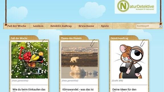 Naturdetektive.de