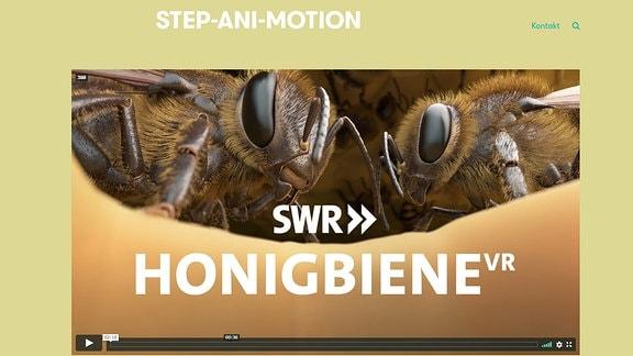 Startseite von Step-Ani-Motion-Honigbiene