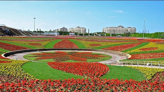Blumenmosaike im Miracle Garden Dubai. Tagetes und Petunien in zigtausendfacher Zahl.