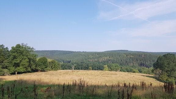 Blick in eine Landschaft