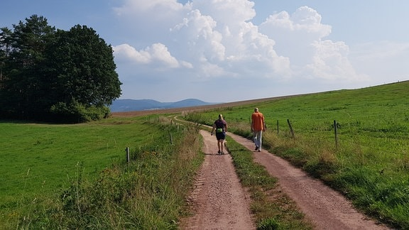 Zwei Wanderer auf einem Feldweg