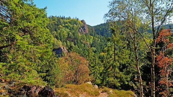 Aussicht über ein Tal