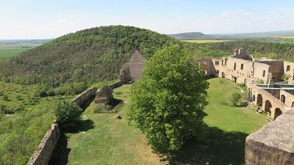 Der Innenhof einer Burgruine