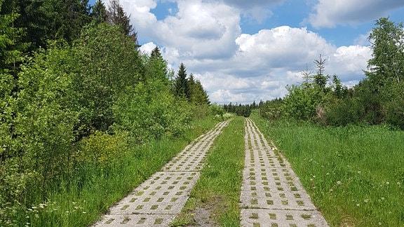 Ein Weg mit Betonplatten
