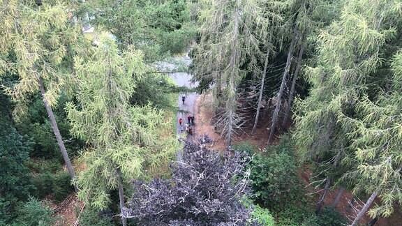 Wanderer erreichen Prinzregententurm auf Muppberg.