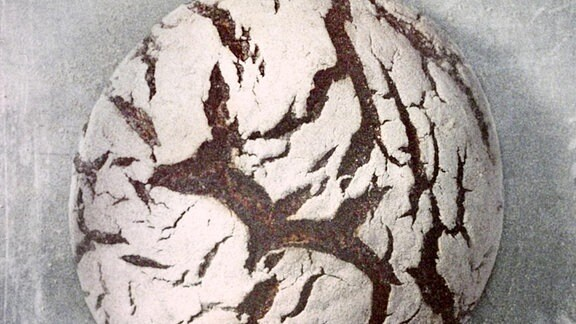Rundes Sauerteigbrot mit mehliger Kruste