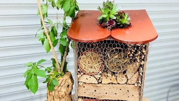 Ein Insektenhotel