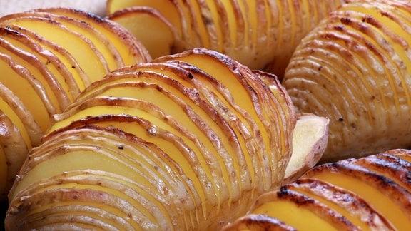 Haselbackenkartoffeln auf Blech