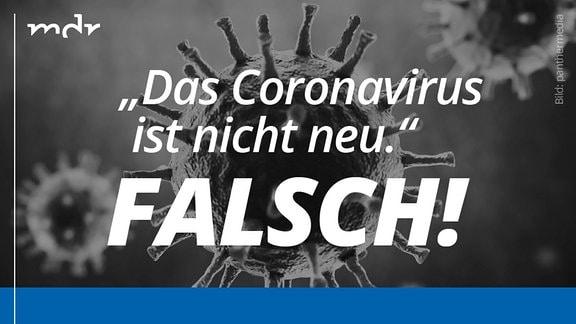 Invertiertes Fotos eines stilisierten Coronavirus. Darauf Fake-News zum Thema Corona sei nicht neu. In der unteren Bildhälfte Richtigstellung der Fake-News.