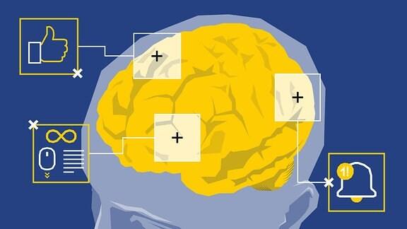 Stilisierter Menschenkopf mit Fokus auf das Gehirn. Einige Bereiche sind hervorgehoben und mit Like- bzw. Nachrichten-Symbol gekennzeichnet.