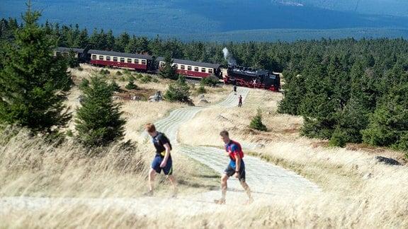 Die Brockenbahn der Harzer Schmalspurbahnen verlässt bei ruhigem, spätsommerlichem Wetter das Gipfelplateau und fährt Richtung Tal, während Wanderer einen alte Patrouillenweg hoch gehen.