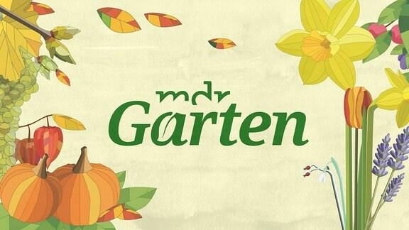 MDR Garten Logo