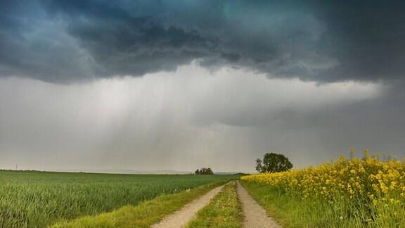 Unwetter in Korbußen in Sachsen