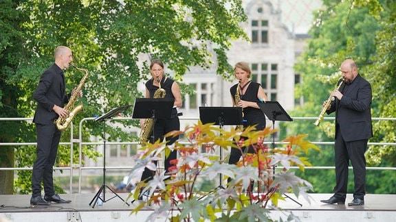 Schon während ihresStudiumslernen sich die vierSaxophonistenkennen. Fasziniert von den musikalischen und klanglichen Dimensionen, die das Saxophonquartett ermöglicht, versuchten die jungenMusikerdiese Vielseitigkeit auszuleben und ihrem Publikum zugänglich zu machen.
