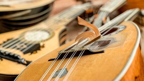 Mandoline mit Federkiel beim Konzert des MDR-Musiksommers in Jerichow