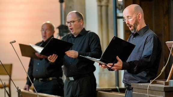 Drei festlich schwarz gekleidete Sänger aus dem MDR-Rundfunkchor beim Eröffnungskonzert der MDR-Musiksommer Sonderausgabe in Erfurt