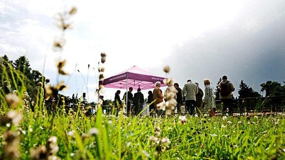 Konzert des MDR-Musiksommers im Wörlitzer Park