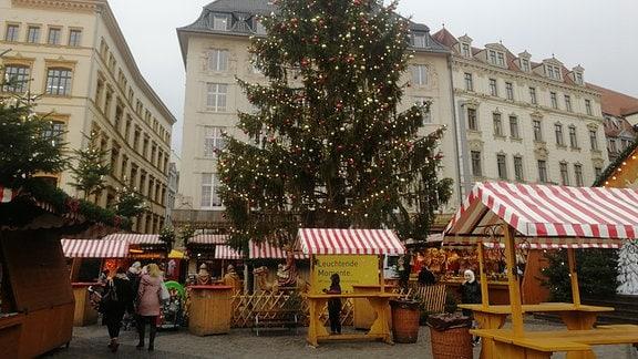 Fertig aufgestellte Weihnachtsbaum auf dem Leipziger Marktplatz