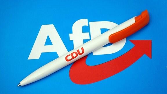 Logo der AfD und Kugelschreiber