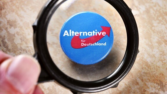 AfD Sachsen-Anhalt