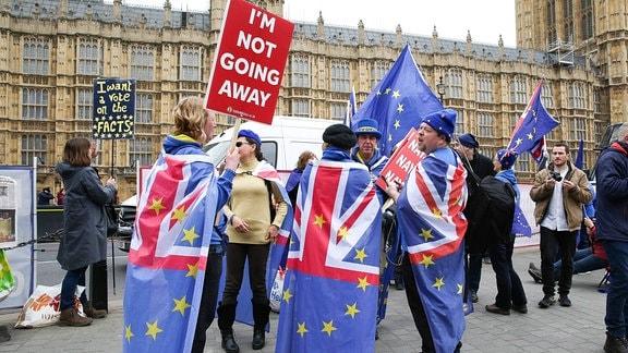 Anti-Brexit-Demonstration vor Parlament in London